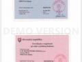 Daňové kartičky